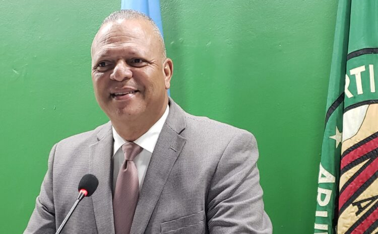 MEP a transforma un pais chikito manera Aruba den un infierno grandi